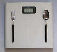 weight loss / weight gain scale
